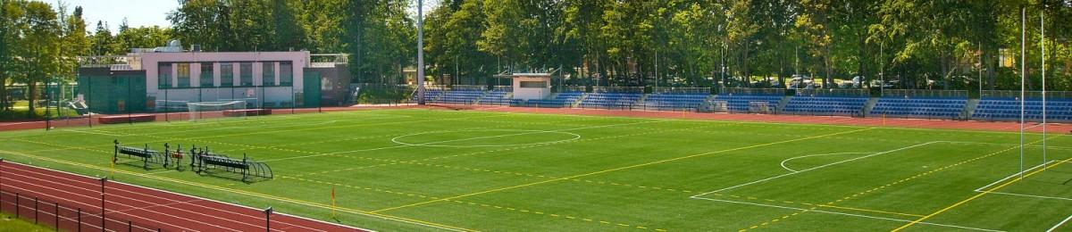 Hale i boiska - zdjęcie główne